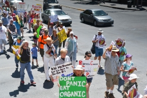 Burqueños March Against Monsanto